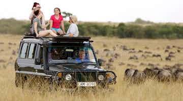 an-encounter-of-safari-railways-02