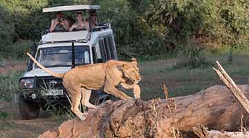 samburu-fly-in-safari-02